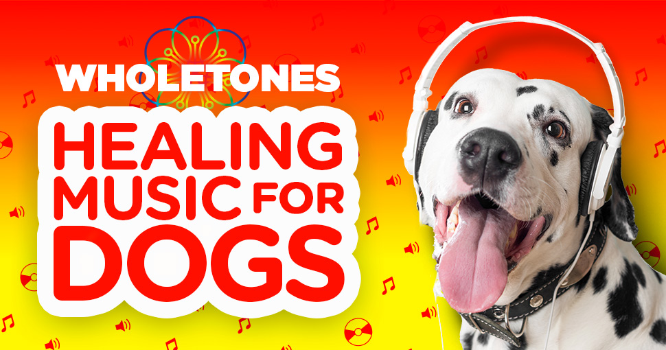 Free Music for Dogs! Wholetones: Calming, Soothing, Healing